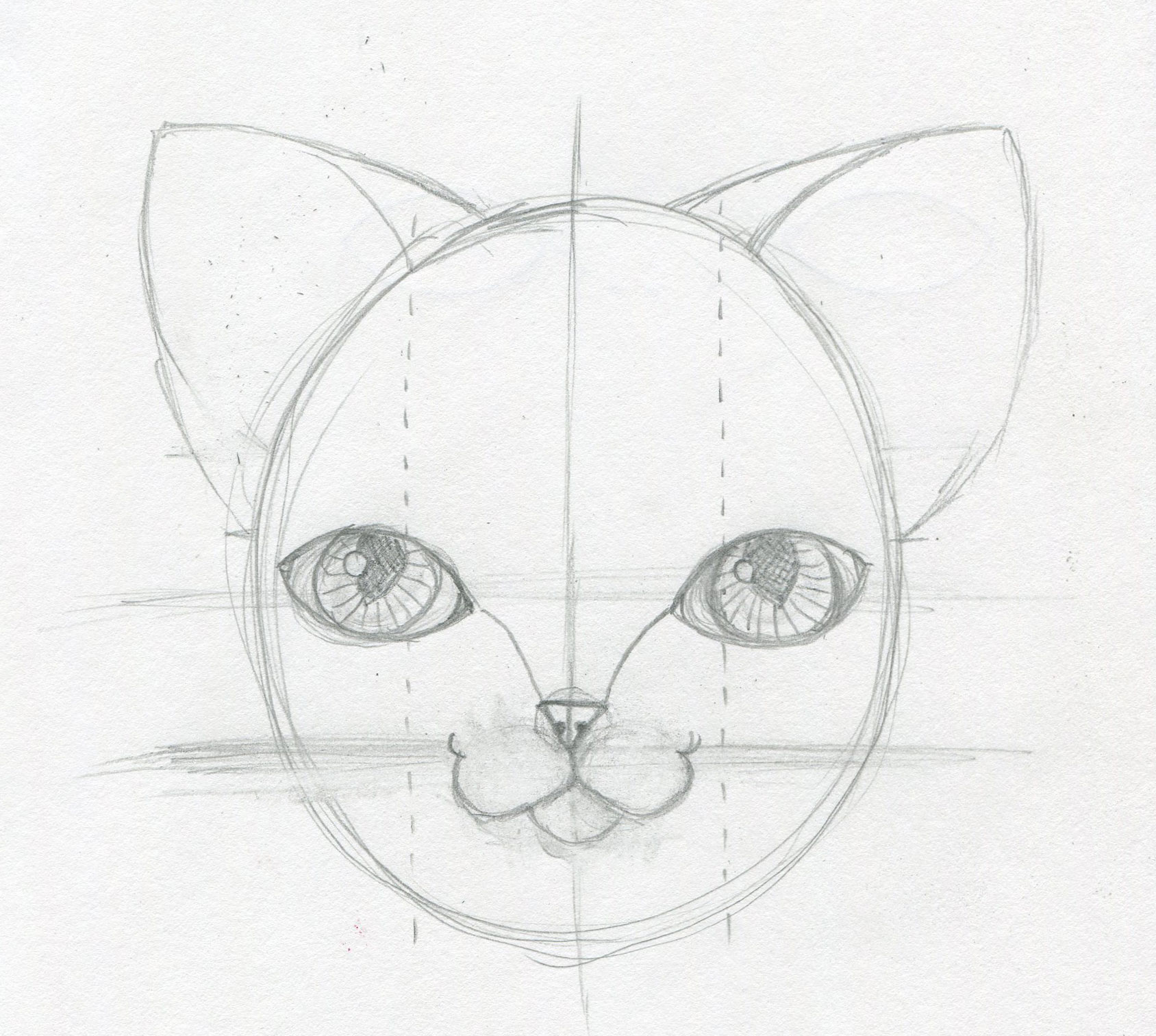 Cat Ear Drawing I Decide I Don't Like These Ears They Are Looking Too  Mouselike And They Are Too Close Together Also, I Think The Face Shape  Needs To Be