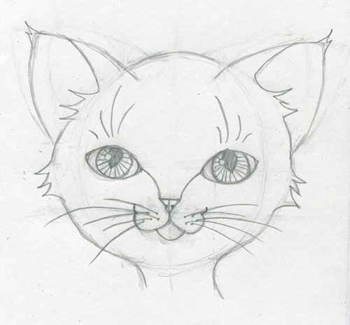 Touch of Whimsy: Learn How to Draw A Cute Animal Face Step-By-Step ...